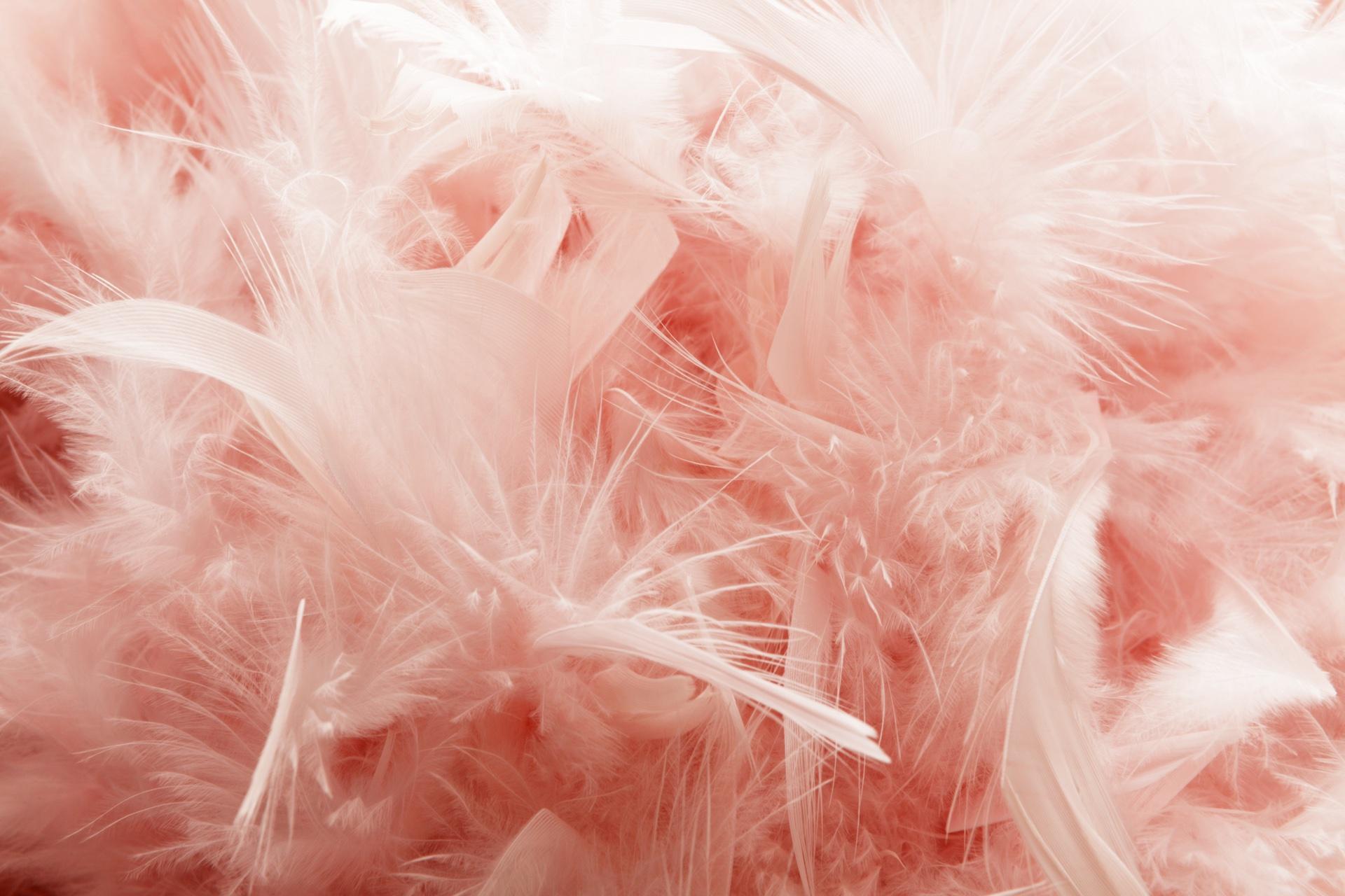 Meisjes houden van Roze